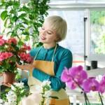 Bewerbung als Floristin